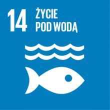 Cel 14: Chronić oceany, morza i zasoby morskie oraz wykorzystywać je w sposób zrównoważony
